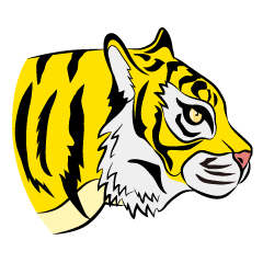 Yellow Tiger Profile