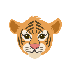Child Tiger Face