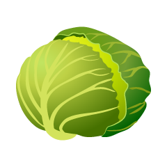 Cabbage Clipart